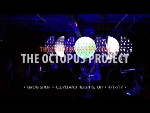 The Octopus Project (4/17/17)