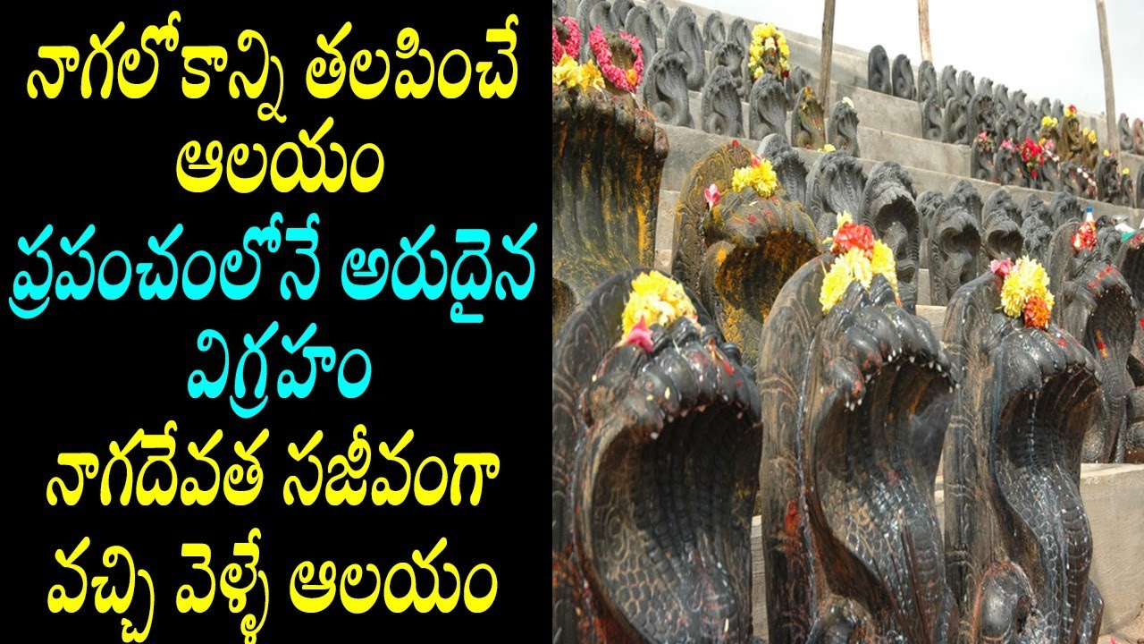 Muktinaga/muktinaga snake temple Bangalore/famous snake temple benagalore/Bangalore famous temples