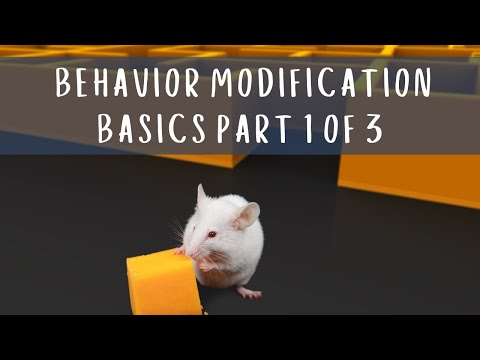 Behavior Modification Basics Part 1 of 3