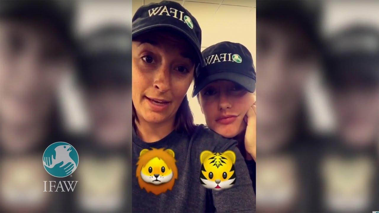 Snapchat Minka Kelly nude photos 2019