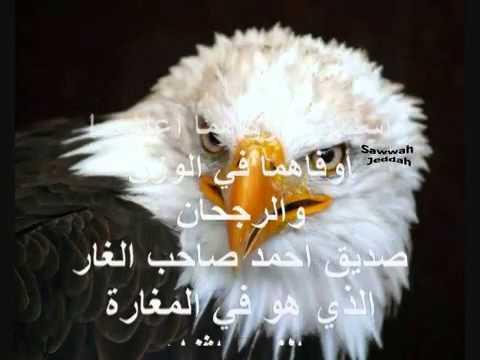 أروع نشيد في هجاء الشيعة الروافض