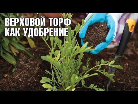 Верховой торф Огородник как удобрение | Hitsad.ru