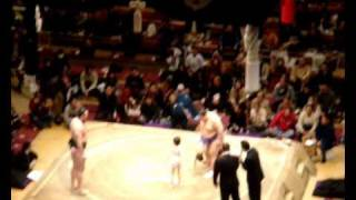34º SUMO Tournament By Razi. Febrero en Tokyo (Parte 1)