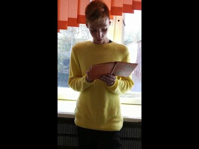 Изображение предпросмотра прочтения – ВладиславСмирнов читает произведение «Отцы и дети» И.С.Тургенева