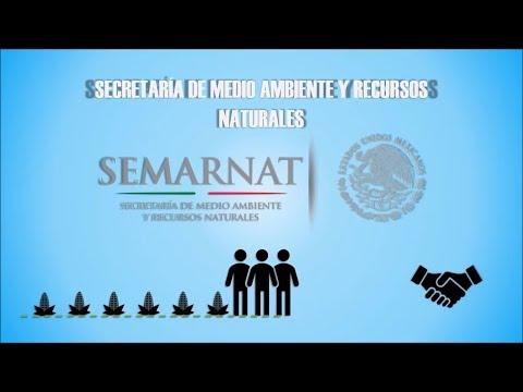 PROTECCIÓN AMBIENTAL Y CUIDADO Del MEDIO AMBIENTE (SEMARNAT | NOM-052)