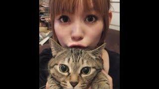 中川翔子(32) 愛猫マミタスが9月19日 亡くなったことを報告 美女と美...