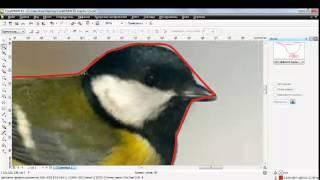 Видеоурок по созданию силуэта в CorelDRAW