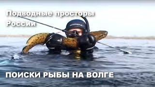 Весна в Волгограде Поиски рыбы в весенней Волге Налим Карась Щука Подводные просторы России