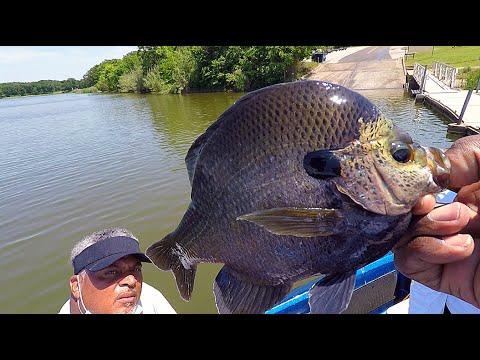 Fishing For TROPHY MONSTER Bluegill!!!