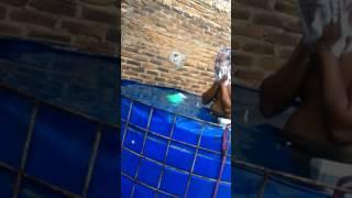 Ngintip ibu hamil mandi di kolam lele bioflok
