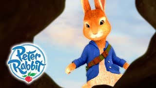 Peter Rabbit - Tales of Trouble   Rabbits Running Wild   Cartoons for Kids