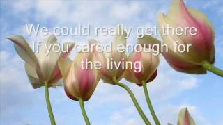 Michael Jackson - Heal the world - (Lyrics)
