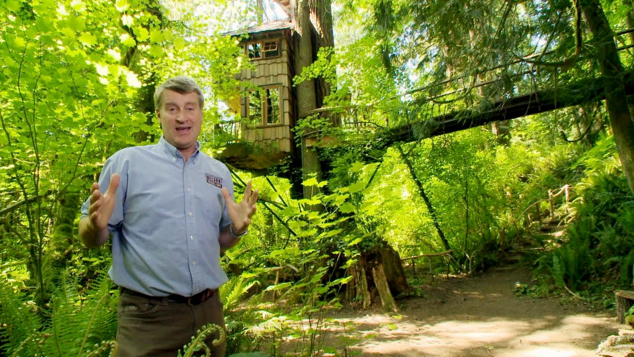 treehouse masters treehouse point. Fine Point And Treehouse Masters Point