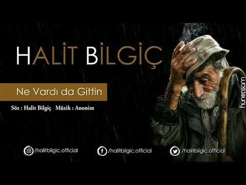 Halit Bilgiç - Ne Vardı Da Gittin - ( Official Audio )