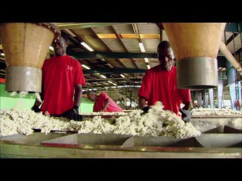 Jobs at Firestone Liberia