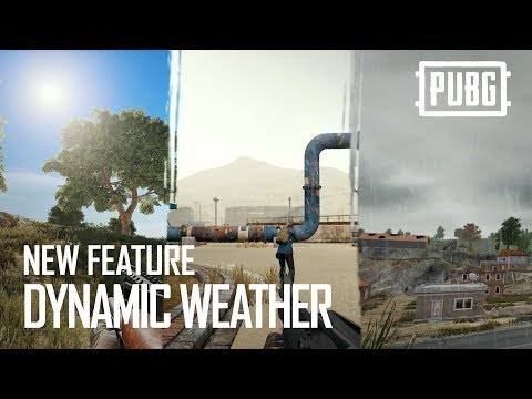 Playerunknown's Battlegrounds launches FIX PUBG campaign