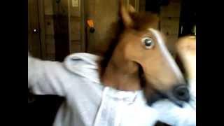 Harlem Shake horse style.