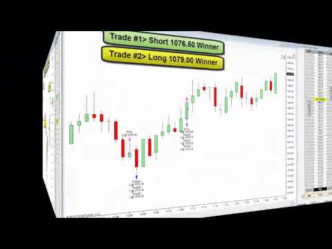 The Trade Scalper Emini S&P Trades for June 2, 2010
