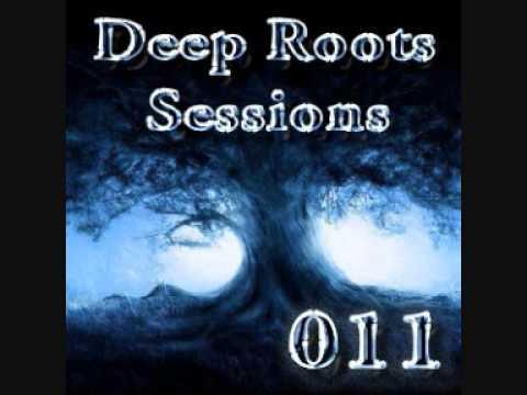 Deep Roots Sessions 011 (DJ Pavle)