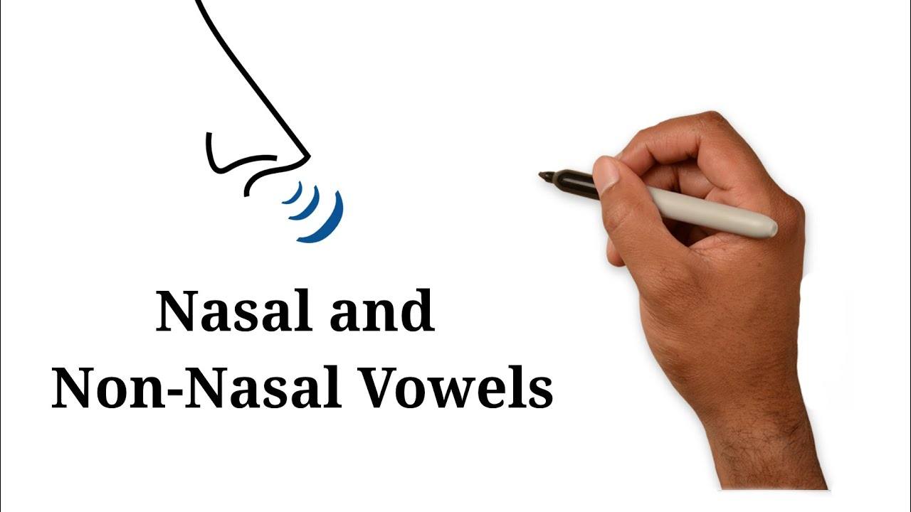 How Nasal And Non Nasal Vowels Work In Haitian Creole