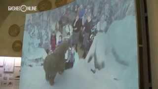 """В Казанском кремле """"ожили"""" животные ледникового периода"""