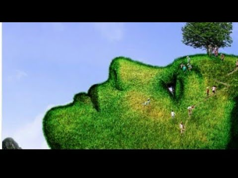 🌎happy earth day whatsapp status video wishes greetings