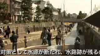 【京都市公式】堀川・通水桜まつり、通水式典(平成21年3月29日)