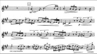 Paganini, Niccolo 4th violinconc. mvt 2 Adagio flebile con sentimento