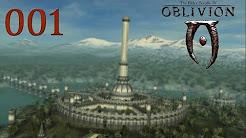 The Elder Scrolls IV: Oblivion S1 [2014]