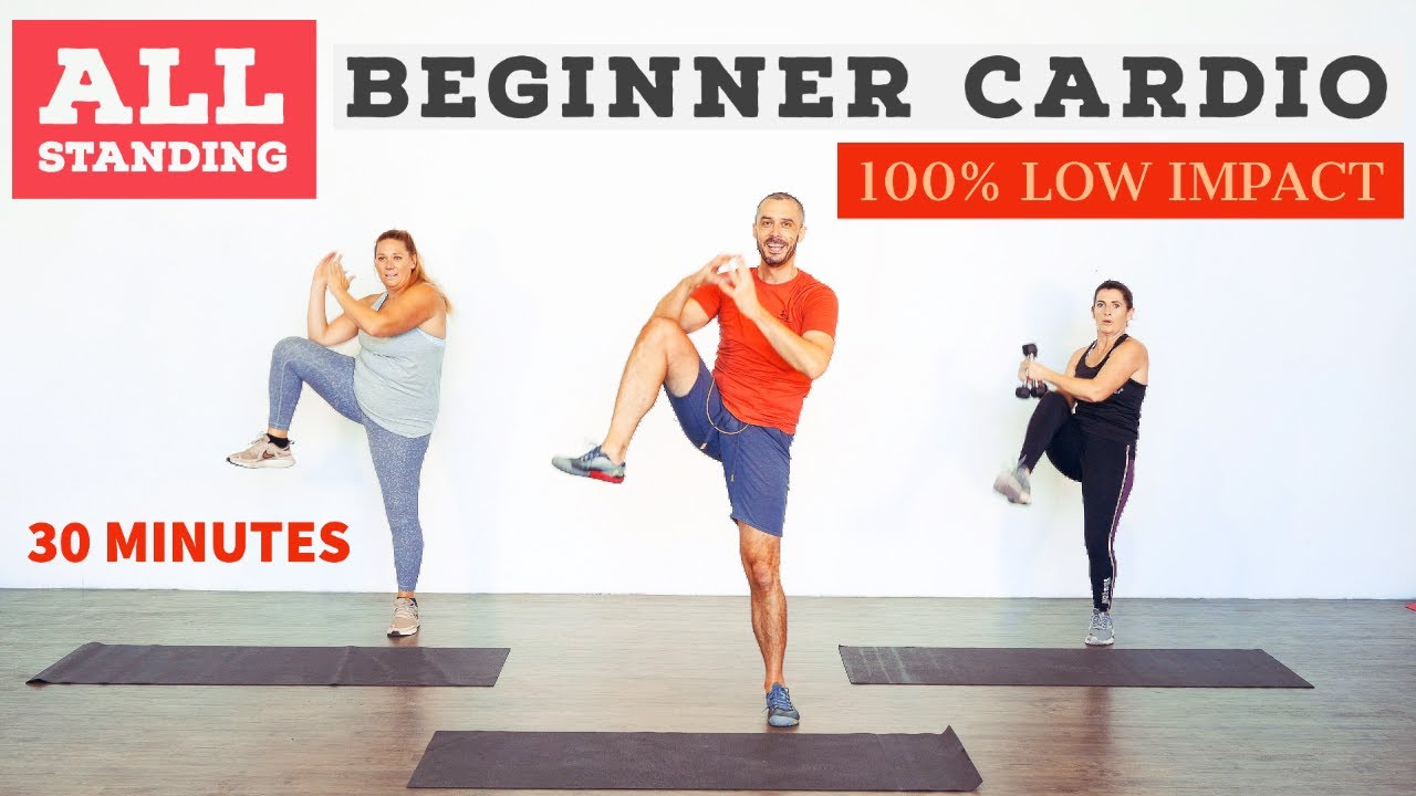 Low impact beginner fat burning home cardio workout ALL standing