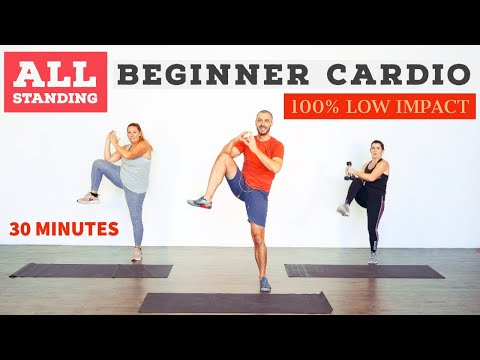 Low impact, beginner, fat burning, home cardio workout. ALL standing!