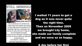 Lily's missing!