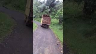 Truck Kayu Di Langkaplancar