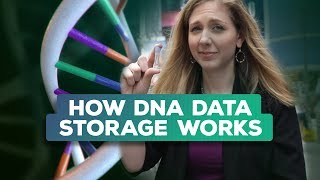 Is your DNA the future of data storage? (Bridget Breaks It Down)