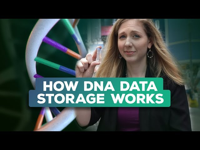 Is synthetic DNA the future of data storage? | Bridget Breaks It Down