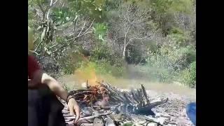 Gambus kedang