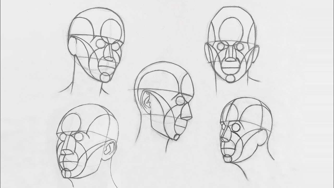 How To Draw Head From Any Angle Using Reilly Method