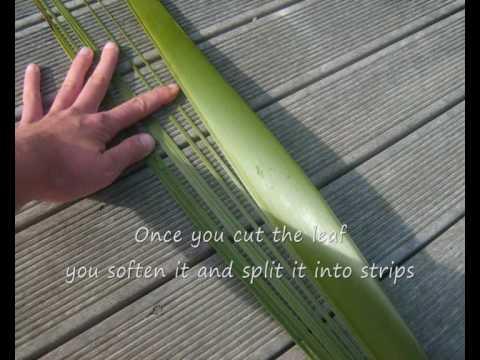 Maori Flax Weaving Youtube