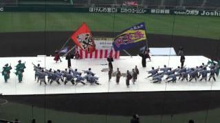 丹波篠山楽空間 ~よさこい甲子園2010(甲子園球場会場)