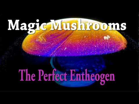 Magic Mushrooms | The Perfect Entheogen