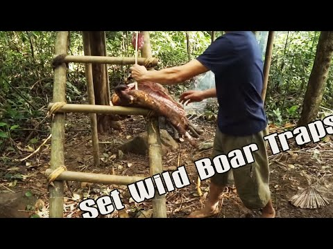 Primitive technology - The 6 month survival challenge in the jungle part 2 @One Knife Man