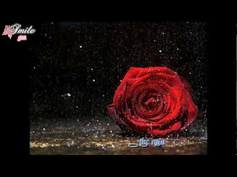 Crying In The Rain - Don Williams lyrics