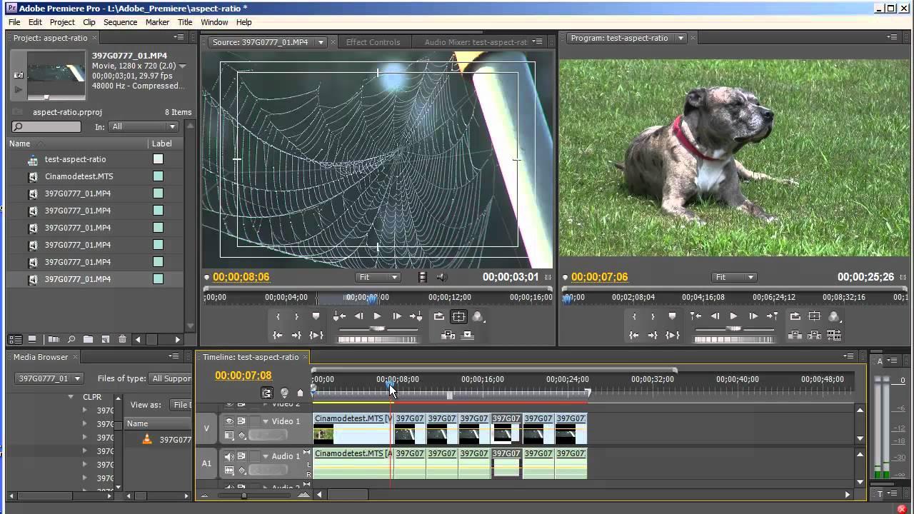 Aspect ratios & field options in Premiere Elements - Adobe