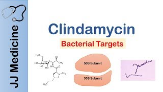 Diseases Treated With Clindamycin