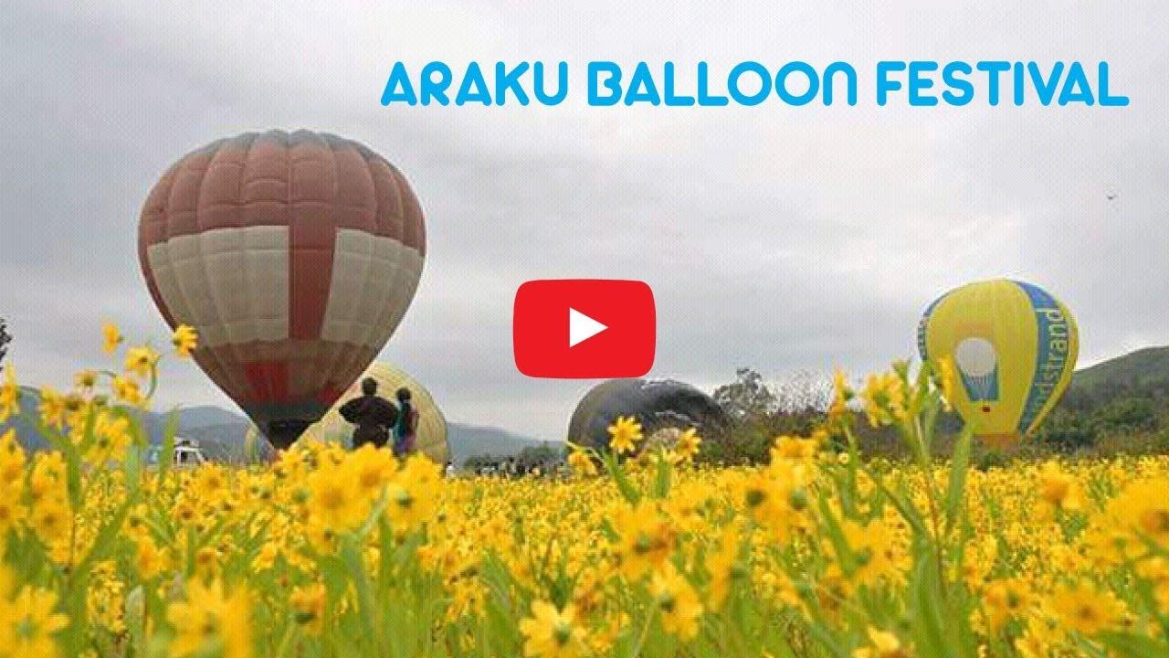 Araku Balloon Festival - Beach Road Visakhapatnam 2017-11-16 05:59
