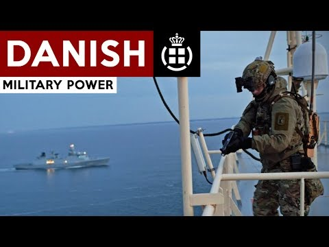 Danish Military Power 2017