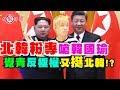 精神病【北韓粉專嗆韓國瑜 覺青反極權卻又挺北韓!?】-打假悍將