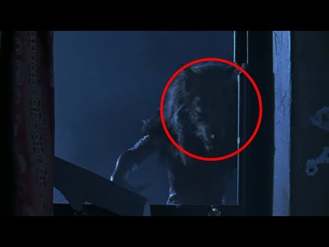 5 Mysterious Creatures Caught on Camera!