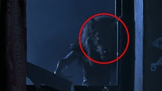 5 Mysterious Creatures Caught on Camera! - Darkness Prevails