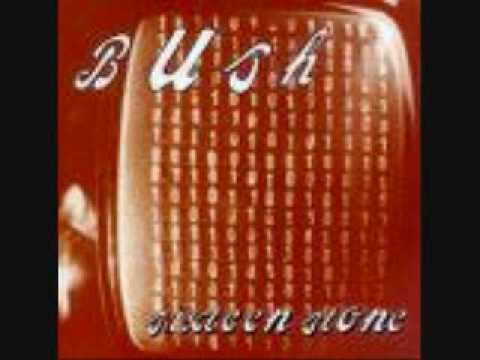 Bush-Comedown